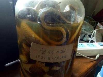 蛇酒 来看看下面的回答你就了解了